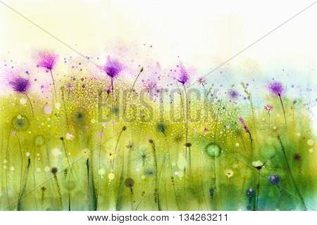 Abstract watercolor painting purple cosmos flowers and white wildflower. Wild flowers meadow green field paintings. Hand painted floral flower in meadows. Spring flower seasonal nature background