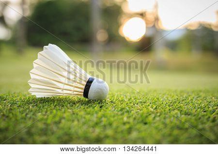 White Shuttlecock For Badminton On Green Grass