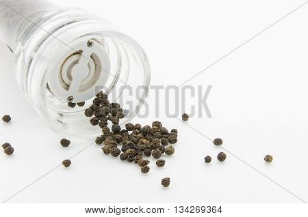 a pepper-mill with peppercorns on white background