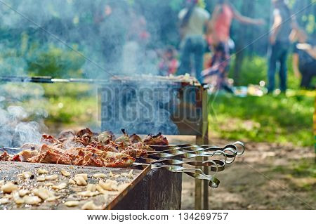 Family leisure in the park:people enjoying beautiful warm weather and preparing tasty food