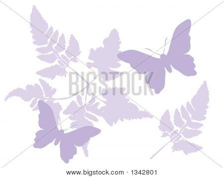 Graphics butterflies 8