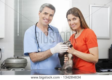 Portrait Of Woman And Doctor With Weasel