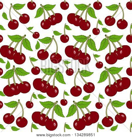 Seamless background with cherry berries. Painted cherries white background.