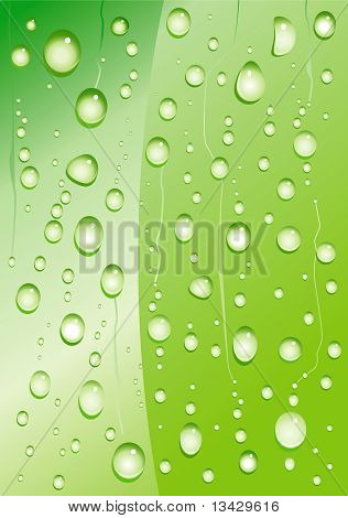Drop Plant