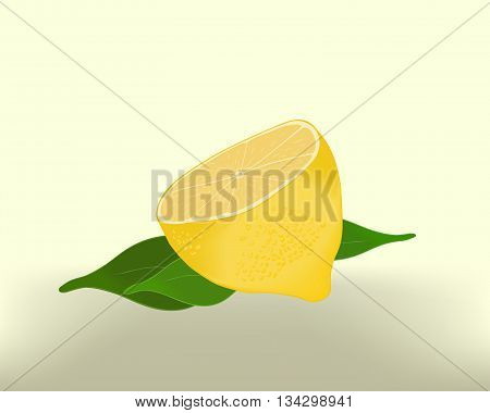 Lemon sliced with leaves - abstract background