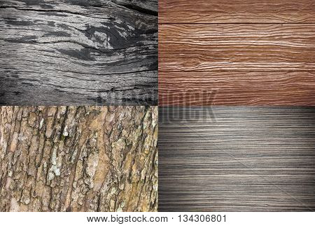 Wood Texture Collection  Or Wood Background