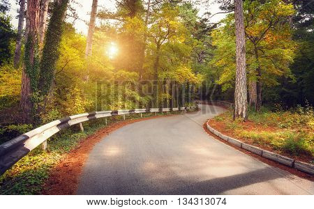 Beautiful landscape with asphalt road green forest and yellow sun at colorful sunrise in summer. Crimean mountains.Travel background
