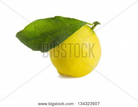 Ripe lemon with green leaf isolated over white. Horizontal.