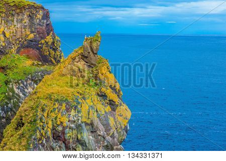 Gorgeous Iceland. Northern Atlantic coast. Ancient rocks covered with green moss