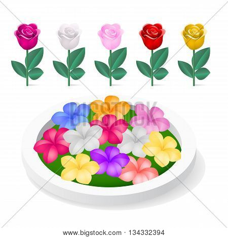 Flowerbed with colorful flowers isolated on white background