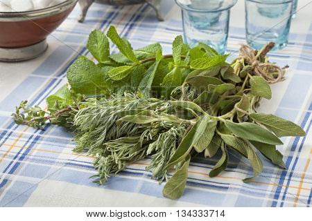 Bouquet of fresh Moroccan herbs for making tea