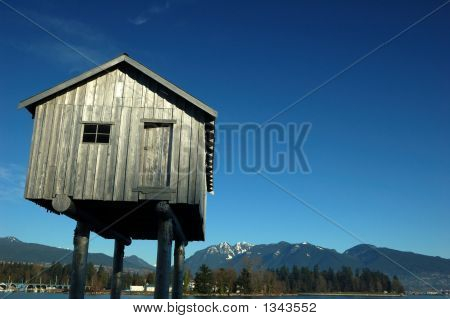 Shed On Stilts