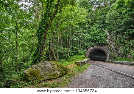 Tunnel on a curve in the road through the Great Smoky Mountains National Park in Tennessee is almost buried by the lush green forest
