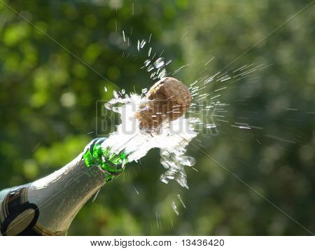 Sparks of champagne, wedding