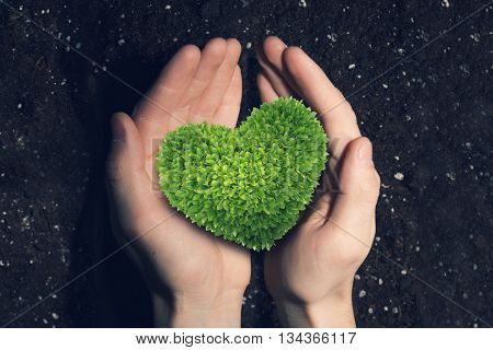With love to nature