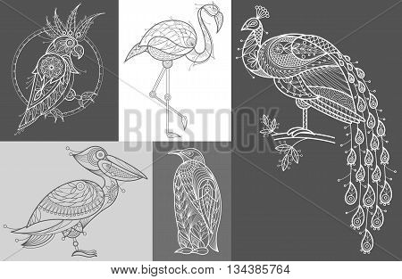 Vector Image cockatoos flamingos pelican penguin peacock. Set of abstract birds illustrations. Black and white. The concept of unusual design objects of nature.