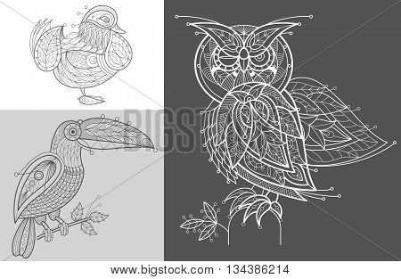 Vector picture mandarin duck toucan owl. Set of abstract birds illustrations. Black and white. The concept of unusual design objects of nature.