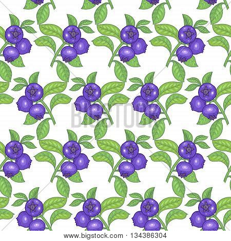 Vector seamless pattern. Branches with leaves and bilberry on a white background. Illustration for design packaging paper wallpaper fabrics textiles.