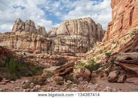 Grand Wash Formations At Capitol Reef National Park, Utah,  Usa