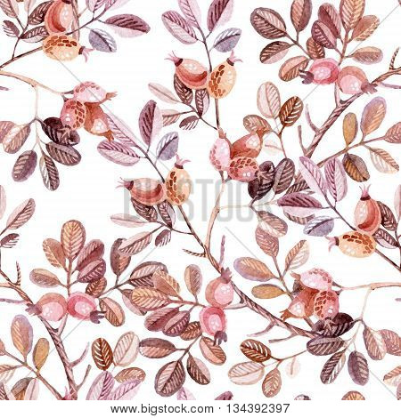 Watercolor seamless pattern with Dog Rose branches. Autumn background