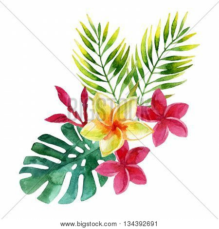plumeria flowers and tropical leaves in watercolor