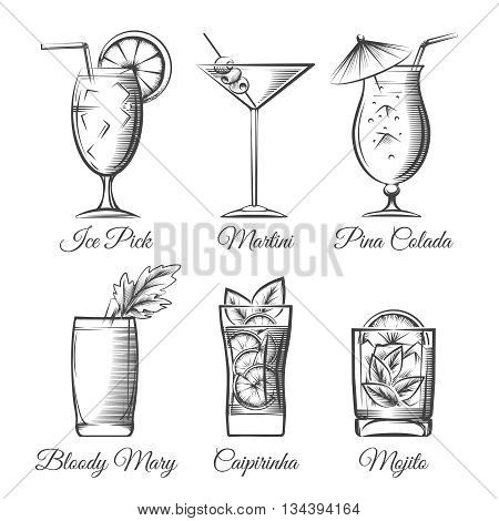 Engraving cocktails. Alcoholic cocktails hand drawn sketch vector