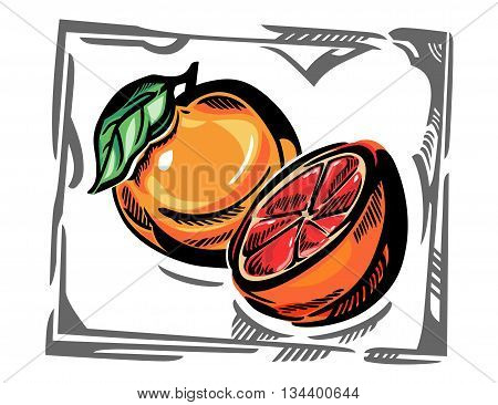 Stylized color vector illustration of a grapefruit. A whole grapefruit with green leave, plus a half of grapefruit, and a gray curvy frame.