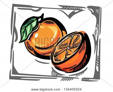 A stylized vector sketch with an orange with leave, and a half of orange, in gray frame.