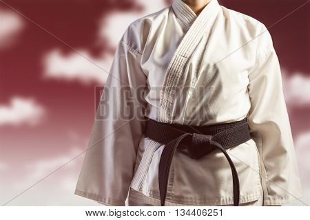 Mid section of karate player against blue sky