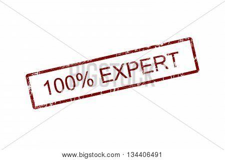 100% Expert grunge rubber stamp on white background