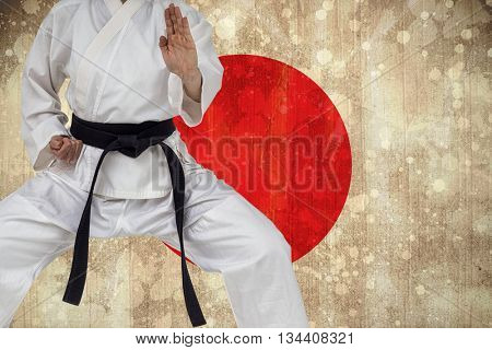 Fighter performing karate stance against japan flag in grunge effect