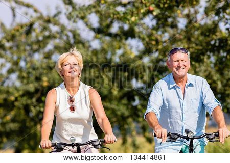 Senior woman and man at bicycle tour on path along field in summer