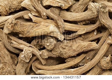 Organic dry Horseradish (Armoracia rusticana) roots. Macro close up background texture. Top view.