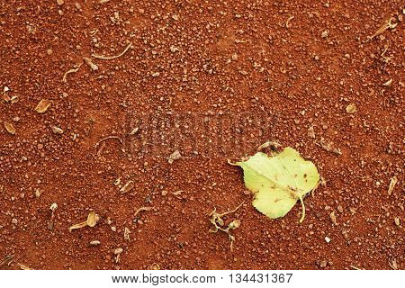Detail Of Dry Leaf On Tennis Court. Dry Crushed Bricks