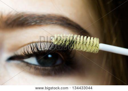 Female Eye With Mascara Brush