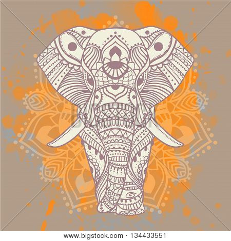 Beautiful Greeting card with elephant Frame of animals elephant vector illustration design template for textile Hand drawn map with Elephant bright prints on T shirts and cups canvas of another object.