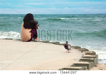 the dove and girl sitting on a pier looking afar the seas