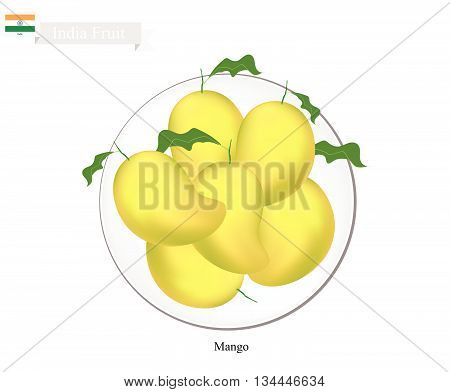 Indian Fruit Illustration of Mango. One of The Most Popular Fruits in India.