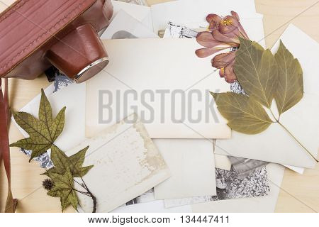 Old Camera On Stack Of Photos With Dry Plants, On Wooden Surface.
