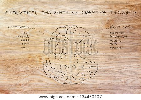 Left And Right Brain With Function Descriptions, Analytical Vs Creative