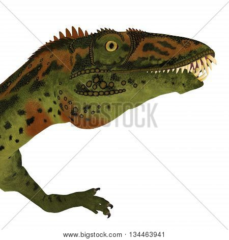 Masiakasaurus Dinosaur Head 3D Illustration - Masiakasaurus was a theropod dinosaur that lived in Madagascar during the Cretaceous period.