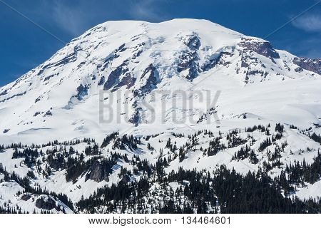 View Of Mount Rainier Summit Covered By Snow, Washington,  Usa