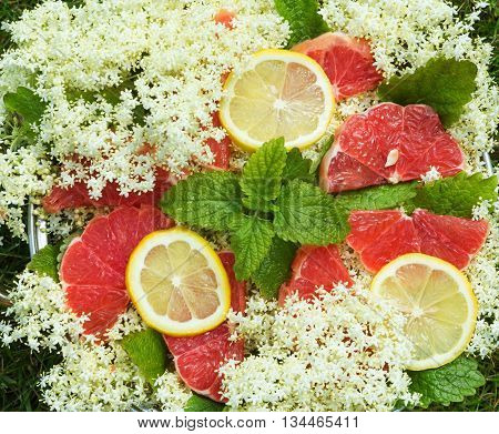 Elderberry flower lemon balm leaves and red grapefruit slices in a bowl.