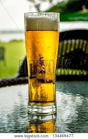 Fresh and cold beer in pint glass