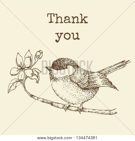 bird on a branch with the words thank you. vintage card with a bird. Vector illustration. Hand drawn bird on sacura branch