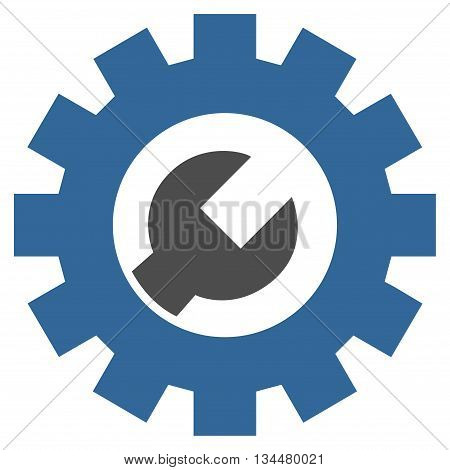 System Setup vector icon. Style is bicolor flat icon symbol, cobalt and gray colors, white background.
