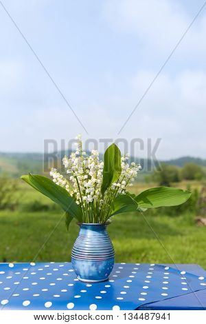 Lily of the valley in blue vase in France