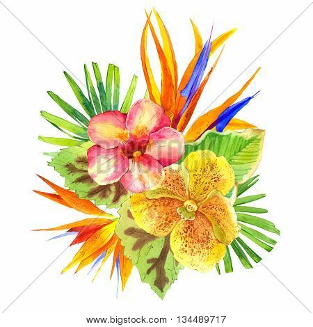 Floral illustration with tropical flowers and plants on white background. Composition with palm leaves, orchid, lily and strelitzia.