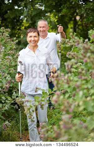 Happy senior couple doing nordic walking in a forest
