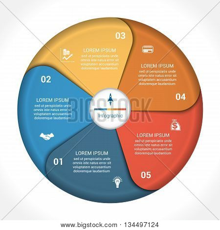 Template infographic five position steps parts with text area vector illustration colourful in the form of flower petals. Business pie chart diagram data.